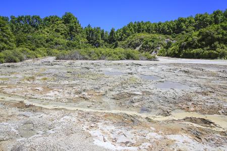 geothermal: Wai-O-Tapu Thermal Wonderland, NEW ZEALAND. Geothermal landscape Frying Pan Flat