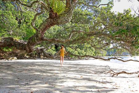 beach wear: Beautiful young woman in yellow pareo posing under tree at Hahei Beach in Coromandel peninsula , North Island, New Zealand.