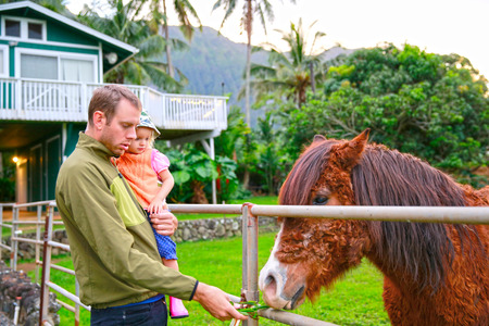 oahu: Young Father holding his little daughter and showing how to feed a horse. Horse farm in Oahu, New Zealand Stock Photo