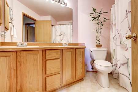 cabine de douche: Bathroom interior with light pink walls and double sink vanity, large mirror with lights and shower cabin with floral patterned curtain. Northwest, USA Banque d'images