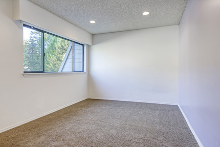 remodeled: Pale purple contrast wall in empty room with carpet floor. Northwest, USA