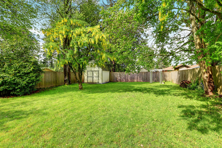 fenced in: Green grass and a shed in empty fenced back yard. Northwest, USA