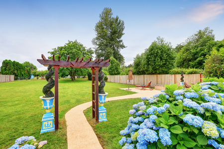 Nicely decorated pergola with pots and blue hydrangea flowers in the backyard. Northwest, USA