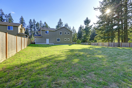 garden styles: Empty spacious backyard area with wooden fence and tall fir trees at the back of the fence. Northwest, USA Stock Photo