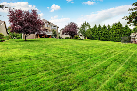 home and garden: Perfectly kept lawn in spacious back yard. House exterior. Northwest, USA Stock Photo