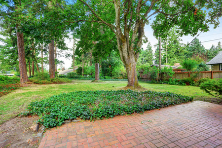 fenced: Fenced Backyard garden with red brick floor patio, trees and grass. Northwest, USA
