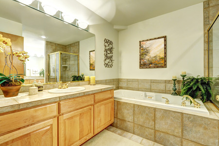 Luxury bathroom with marble tile and large vanity cabinet. Northwest, USA