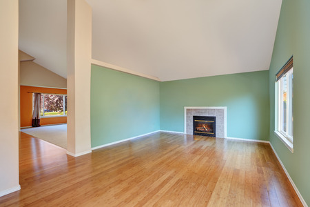 Empty living room interior in a new construction house.  Great room comes with a gas fireplace , green walls and polished hardwood floor. Northwest, USA