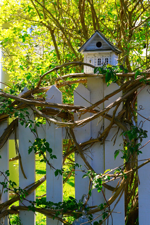 White wooden bird house on a picket fence post. Stock Photo