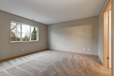 Empty room interior in grey tones with carpet flooring . Northwest, USA