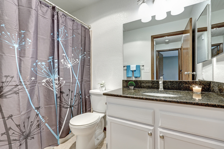 renovated: Bathroom features white wall, white vanity cabinet  with dark granite counter top and floral pattern of dandelions shower curtain. Northwest, USA