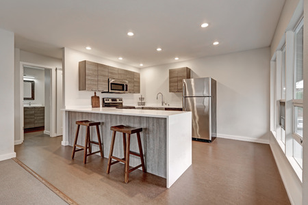 New modern apartment interior presents compact grey kitchen with new white quartz countertops, grey cabinets and stainless steel appliances. Northwest, USA