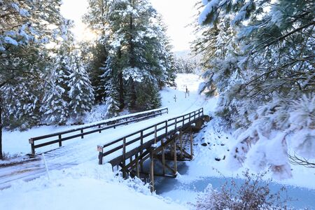 SNow covered beautiful old American rustic country side landscape with bridge, trail and water canal. Peaceful and inspiring. Banque d'images - 142945729