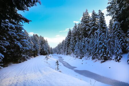 SNow covered beautiful old American rustic country side landscape with bridge, trail and water canal. Peaceful and inspiring. Banque d'images - 142944230