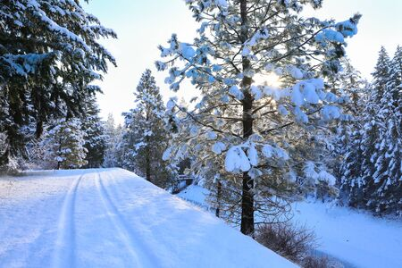 SNow covered beautiful old American rustic country side landscape with bridge, trail and water canal. Peaceful and inspiring. Banque d'images - 142950391