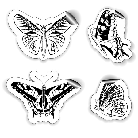 set of four stickers in the form of butterflies of in black and white colors Vector