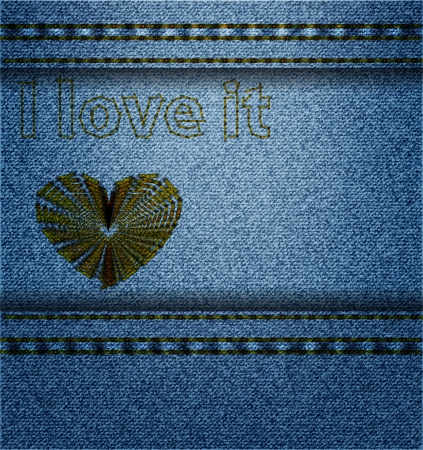 Denim background with embroidery Vector