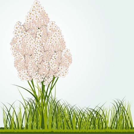 blossomed: Vector floral background with little flowers gathered in clusters and grass with space for text