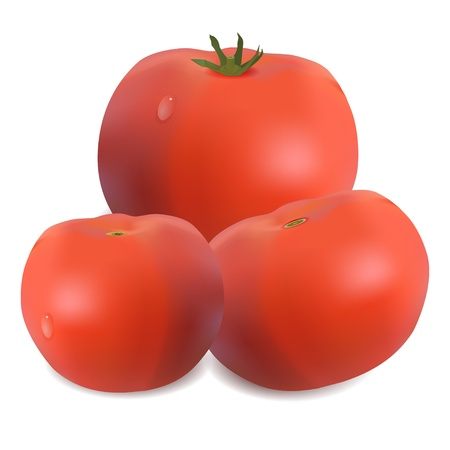 Three tomatoes isolated on white. Stock Vector - 18371153