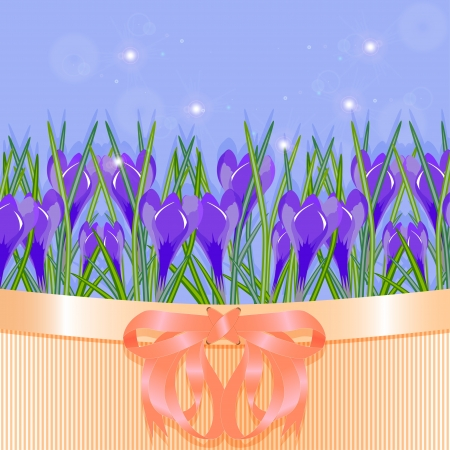 Background of spring flowers crocuses  Vector illustration Vector