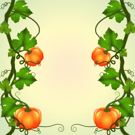 Autumn background. Vine pumpkins with space for text. Vector illustration. Vector