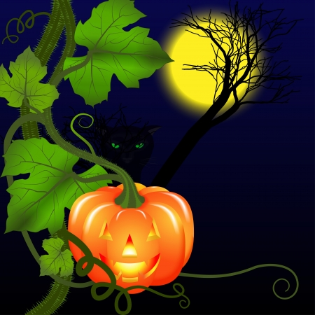 Background for Halloween. Pumpkin and black cat with green eyes at night under the moon. Vector illustration. Vector