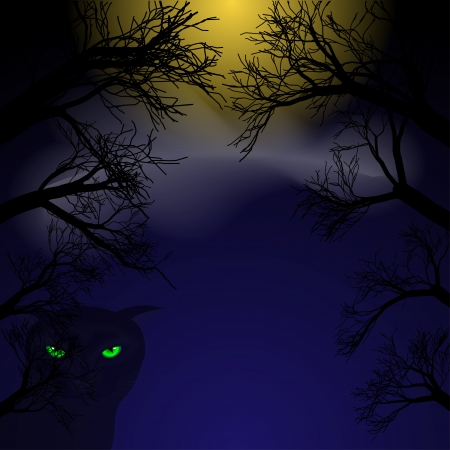 anger abstract: Background for Halloween. Black cat with green eyes at night under the moon in the trees. Vector illustration.