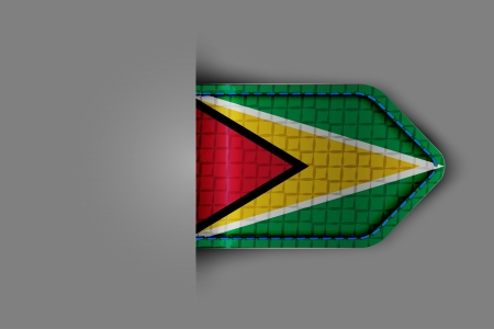 georgetown: Flag of Guyana in the form of a glossy textured label or bookmark. Vector illustration. Illustration
