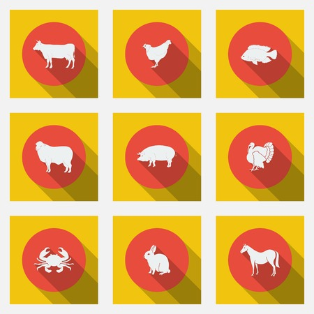 Fashionable flat icons with long shadows types of meat products. Nine animals on a bright background. Vector illustration. Vector
