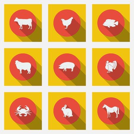 Les graphismes plats à la mode avec de longues ombres types de produits à base de viande. Neuf animaux sur un fond lumineux. Vector illustration.