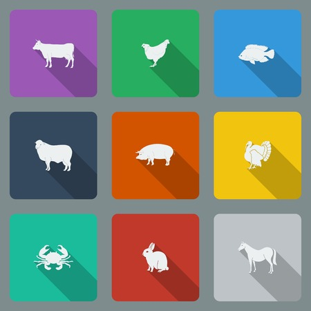 Fashionable varicolored flat icons with long shadows types of meat products. Nine animals on a bright background. Vector illustration. Vector
