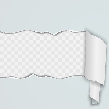 missive: Light background with a torn strip of paper. Vector illustration. Illustration
