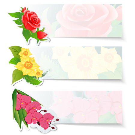 pink orchid: Set of three colorful web banners with different flowers. Red roses bud, yellow daffodils and pink orchid on a horizontal bar. Vector illustration.