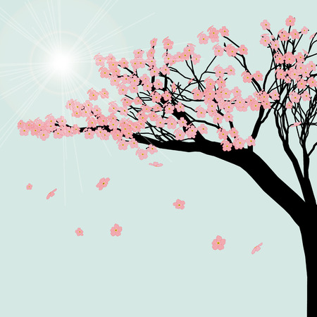 Blooming cherry tree. Sakura flowers against the blue sky. Vector illustration. Illustration