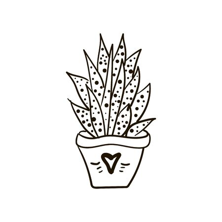 Illustration of a cactus homemade, in a pot with long spiky leaves, in a speck, in a pot with a sketch heart drawing 向量圖像