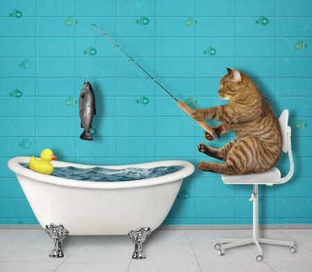 Le pêcheur de chat beige est assis sur une chaise de bureau et pêche dans la baignoire de la salle de bain. Fond blanc. Isolé.