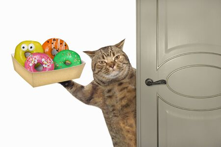 The beige cat with a paper box of donuts opens the door. White background. Isolated.