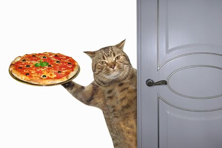 The beige cat with a tray of pizza opens the door. White background. Isolated.