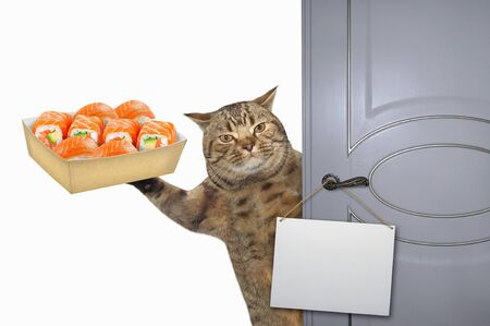The beige cat with a paper box of sushi opens the door. There is a blank sign on the doorknob. White background. Isolated.