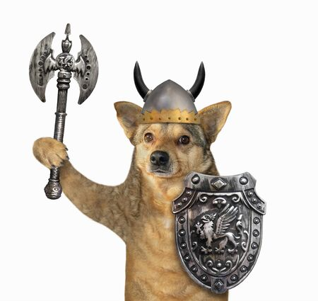 The dog viking in a helmet with horns is armed with a shield with a dragon and a double headed battle axe. White background. Isolated. Stok Fotoğraf