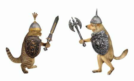 The dog with a double headed battle axe and the cat with an inlaid sword are fighting each other. White background. Isolated. Stok Fotoğraf
