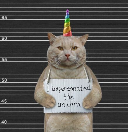 The beige cat with a placard on his neck that says I impersonated the unicorn is in the prison. Black lineup background.