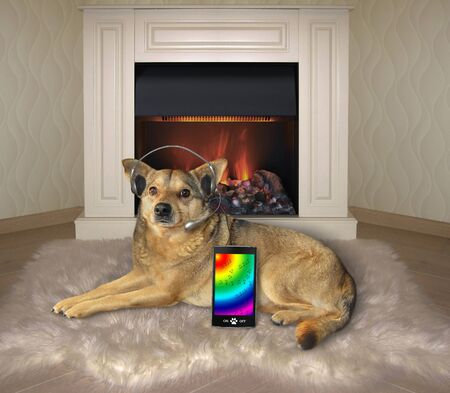 The beige dog in headphones with a smartphone is lying on a faux fur rug near a fireplace. He is listening to music.