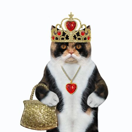 The cat queen in a gold crown and a red heart shaped pendant holds a handbag. White background. Isolated. Reklamní fotografie