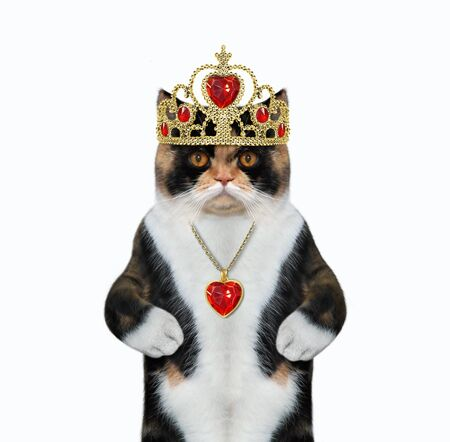 The cat queen wears a gold crown and a red heart shaped pendant. White background. Isolated.