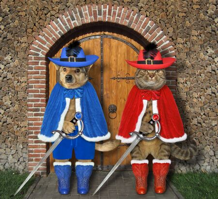 The cat with the dog dressed in musketeer uniform with swords are standing at the gate of the old castle.