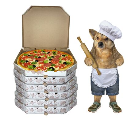 The dog baker in a chef hat and apron with a rolling pin in its paw is standing near a stack of pizza boxes. White background. Isolated.