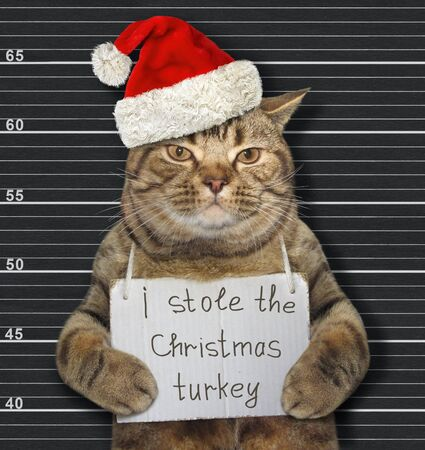 The beige cat in a red Santa Claus hat with a banner on his neck that says I stole the Christmas turkey is in a prison. Black lineup background.
