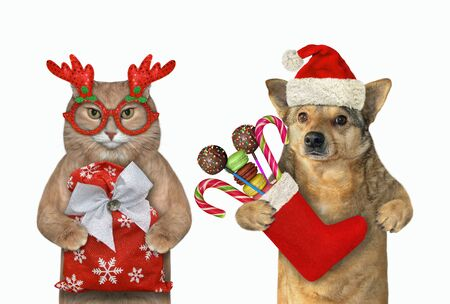 A dog with a cat celebrate New Year. The cat in red glasses holds a bag of gifts and the dog in a Santa Claus hat holds a Christmas stocking with candies. White background. Isolated. Stock Photo
