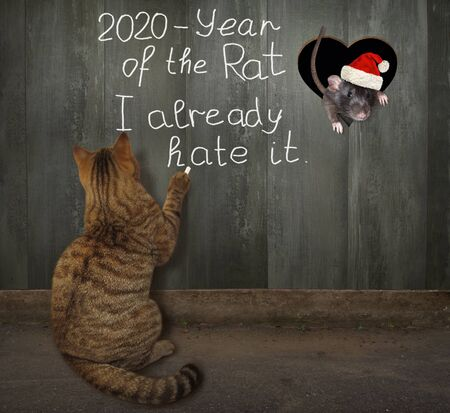 The cat is writes on the wooden fence - 2020 year of rat I already hate it. The mouse in a Santa Claus hat is looking out through the heart shaped hole. Foto de archivo